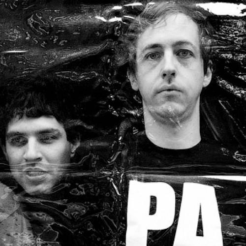 Новый альбом Animal Collective попал в сеть раньше официального релиза