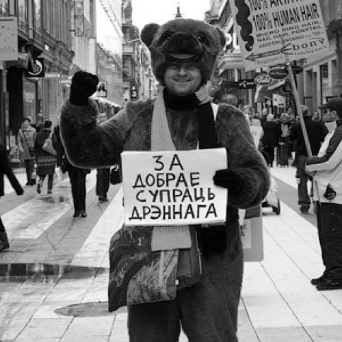 Владимир Пугач десантировался в Стокгольме в образе плюшевого медведя