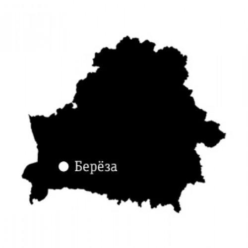 Карта местности: Берёза