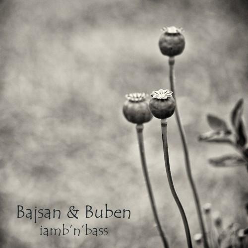 Buben и Bajsan выпускают альбом цифровой поэзии для 240 стран мира