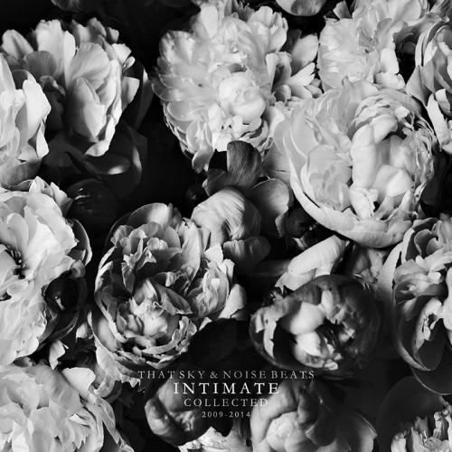 That Sky и Noise Beats выпустили совместный альбом