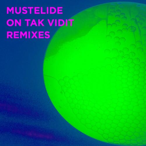 Электронщики из Беларуси и России сделали альбом ремиксов для Mustelide