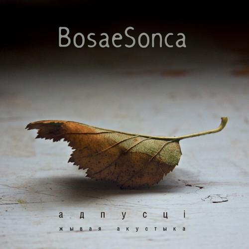 Гурт BosaeSonca запісаў «жывы» альбом са струнным трыа